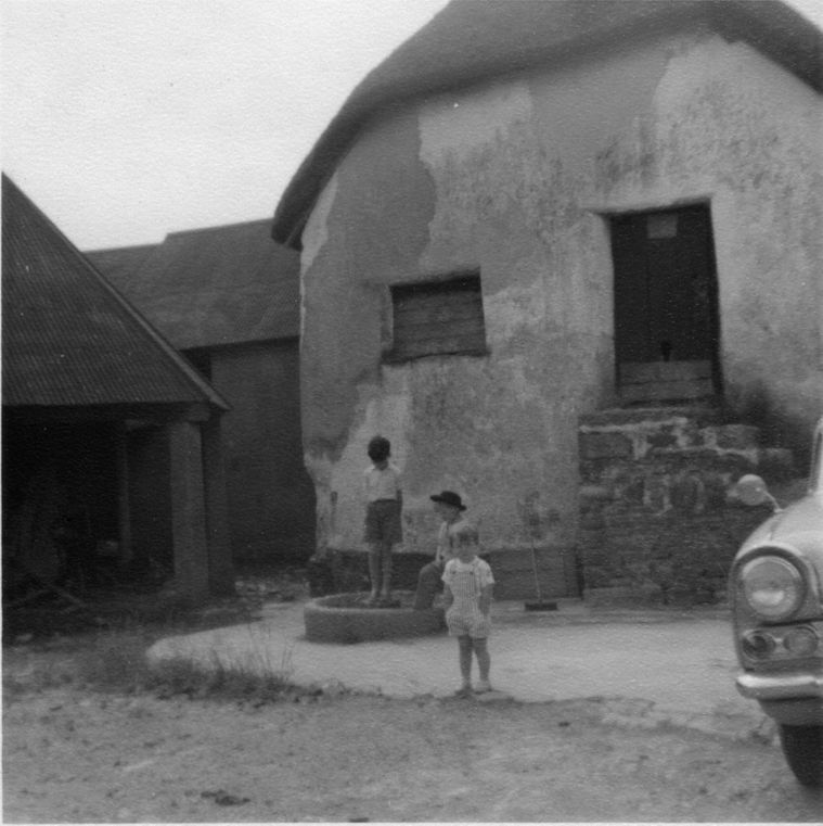 Thatched barn in the 1950s or 1960s.